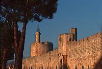 Europe/France/Languedoc-Roussillon/30/Gard/AIgues Mortes: Les remparts