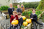 Aisling O'Sullivan principal of St Brendans NS in Fenit with students from 1st class who planted the seeds of pumpkins in April/May and who now have a nice variety of pumpkins for Halloween.