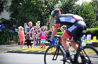 Fans cheers the riders on Upper Plain Rd during stage five of the NZ Cycle Classic UCI Oceania Tour in Masterton, New Zealand on Tuesday, 26 January 2017. Photo: Dave Lintott / lintottphoto.co.nz