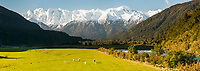 Beautiful Southern Alps as seen through Whataroa Valley with Whataroa river, West Coast, South Westland, New Zealand