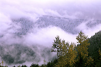 Winter clouds momentarily part to reveal fresh snow covering a forested mountainside. Stevens Pass, Cascade Mountains, Washington State.