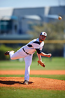 FDU-Florham Devils starting pitcher Brad Norris (12) delivers a pitch during the first game of a doubleheader against the Farmingdale State Rams on March 15, 2017 at Lake Myrtle Park in Auburndale, Florida.  Farmingdale defeated FDU-Florham 6-3.  (Mike Janes/Four Seam Images)