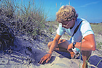 Tim At Diamondback Terrapin Nesting Site