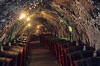 Europe/Hongrie/Tokay/Env Sarospatak: Les caves Rakoczi au chateau Megyer - Barriques de Tokay