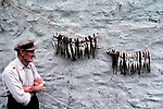 Shetland Islands Scotland Uk 1979. Fisherman hanging out Whiting on his croft back wall, it is drying. 1970s UK