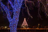 Zilker Holiday Tree as seen through the Zilker Park Trail of Lights