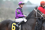 February 17, 2020: Warrior's Charge (6) with jockey Florent Geroux aboard before the Razorback Handicap at Oaklawn Racing Casino Resort in Hot Springs, Arkansas on February 17, 2020. Justin Manning/Eclipse Sportswire/CSM