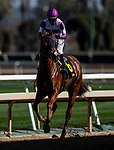 December 26, 2020: Wipe the Slate wins at Santa Anita Park in Arcadia, California on December 26, 2020. Evers/Eclipse Sportswire/CSM