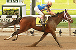 Overanalyze, ridden byJohn Velazquez, wins the Futurity Stakes (GII) for 2-year olds, going 6 furlongs at Belmont Park, Elmont, New York.  Trainer Todd Pletcher  Owner Repole Stables.