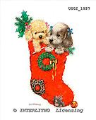 GIORDANO, CHRISTMAS ANIMALS, WEIHNACHTEN TIERE, NAVIDAD ANIMALES, paintings+++++,USGI1927,#XA# christmas stocking dogs,puppies