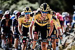 The peloton led by Robert Gesink (NED) and Team Jumbo-Visma climb Col de Turini during Stage 2 of Tour de France 2020, running 186km from Nice Haut Pays to Nice, France. 30th August 2020.<br /> Picture: ASO/Alex Broadway | Cyclefile<br /> All photos usage must carry mandatory copyright credit (© Cyclefile | ASO/Alex Broadway)