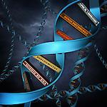 Illustrative image of DNA replica with books