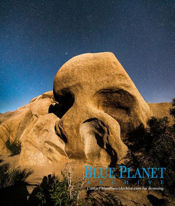 Skull Rock and stars at night, Joshua Tree National Park, California, USA