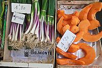 Europe/France/Aquitaine/40/Landes/Dax: Oignasse sur le marché, terme patois dans les Landes désignant la deuxième repousse de l'oignon. Appelé aussi cébars  dans les Pyrénées. et tranches  de citrouille