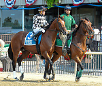 July 5, 2021: Civil War, ridden by Benjamin Hernandez, during the post parade prior to the 2021 running of the G3 Dwyer S. at Belmont Park in Elmont, NY. Sophie Shore/ESW/CSM
