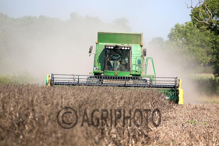 John Deere Combine Harvesting  Beans