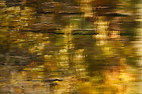 Colorful foliage from maple trees reflects in Wilber Lake, near Oneonta, New York, on a sunny fall day. <br /> <br /> © Michael Forster Rothbart<br /> www.mfrphoto.com <br /> 607-267-4893 o 607-432-5984<br /> 5 Draper St, Oneonta, NY 13820<br /> 86 Three Mile Pond Rd, Vassalboro, ME 04989<br /> info@mfrphoto.com<br /> Photo by: Michael Forster Rothbart<br /> Date: 10/2009    File#:  Canon 5D digital camera frame 75705