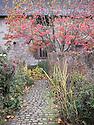 Piet Oudolf garden at Bury Court, Bentley, Surrey, mid November.