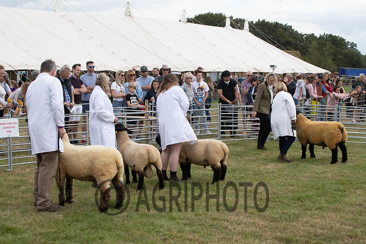 29-8-2021 Edenbridge & Oxted Show <br /> ©Tim Scrivener Photographer 07850 303986<br />      ....Covering Agriculture In The UK....