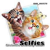Howard, SELFIES, paintings+++++,GBHRPROV170,#Selfies#, EVERYDAY