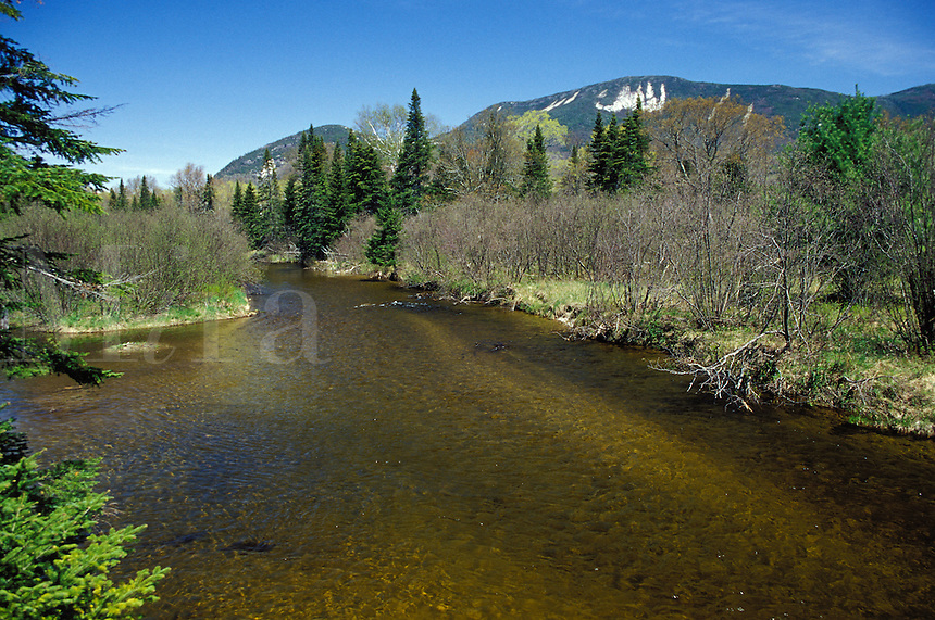 Nesowadnehunk Stream with Mount O.J.I and Barren Mountain in the background, Baxter State Park, Maine.