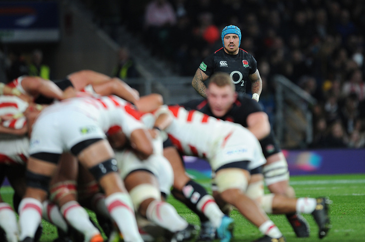 Jack Nowellof England looks on during the Quilter International match between England and Japan at Twickenham Stadium on Saturday 17th November 2018 (Photo by Rob Munro/Stewart Communications)