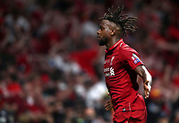 Liverpopol's Divock Origi celebrates after scoring during the UEFA Champions League final football match between Tottenham Hotspur and Liverpool at Madrid's Wanda Metropolitano Stadium, Spain, June 1, 2019. Liverpool won 2-0.<br /> UPDATE IMAGES PRESS/Isabella Bonotto