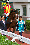 SHA TIN,HONG KONG-MAY 01: Maurice ,ridden by Joao Moreira ,is preparing for the Champions Mile at Sha Tin Racecourse on May 01,2016 in Sha Tin,New Territories,Hong Kong (Photo by Kaz Ishida/Eclipse Sportswire/Getty Images)