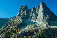 Liberty Bell Mountain near Washington Pass along North Cascades Highway (Highway 20), Washington.  Fall.  Larch trees are turning yellow.