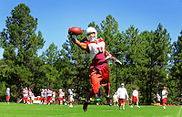 Jul 31, 2009; Flagstaff, AZ, USA; Arizona Cardinals wide receiver Larry Fitzgerald makes a one handed catch during training camp on the campus of Northern Arizona University. Mandatory Credit: Mark J. Rebilas-