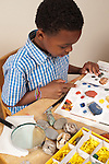 8 year old boy at home working on categorizing rocks in rock collection using photographs from book
