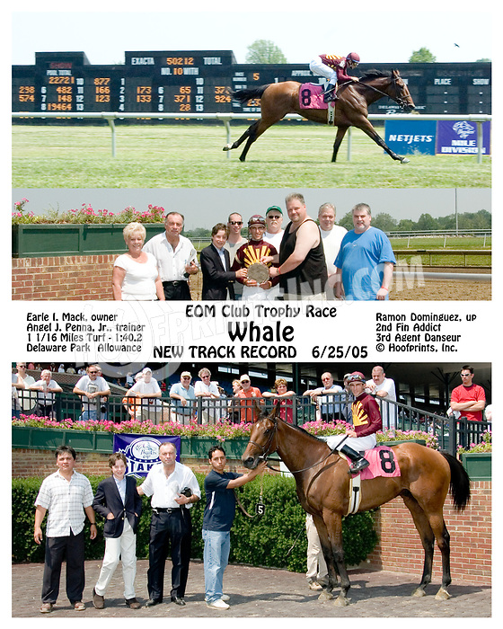 Whale winning at Delaware Park on 6/25/05 setting a NTR 1 1/16 Miles Turf 1:40.2