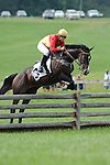 Mussiecoocoo ridden by Kristin Fisher  wins The KINSLEY COMPANIES MAIDEN OPEN TIMBER at Shawan Downs Legacy Chase 2011 in Hunt Valley, MD  on 09/24/11. (Ryan Lasek / Eclipse Sportwire)
