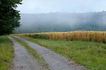 Europa, DEU, Deutschland, Hessen, Landkreis Fulda, Morgenstimmung, Nebel im Fuldatal, Sommer, Kategorien und Themen, Natur, Umwelt, Landschaft, Jahreszeiten, Stimmungen, Landschaftsfotografie, Landschaften, Landschaftsphoto, Landschaftsphotographie, Wetter, Wetterelemente, Wetterlage, Wetterkunde, Witterung, Witterungsbedingungen, Wettererscheinungen, Meteorologie, Wettervorhersage<br /> <br /> [Fuer die Nutzung gelten die jeweils gueltigen Allgemeinen Liefer-und Geschaeftsbedingungen. Nutzung nur gegen Verwendungsmeldung und Nachweis. Download der AGB unter http://www.image-box.com oder werden auf Anfrage zugesendet. Freigabe ist vorher erforderlich. Jede Nutzung des Fotos ist honorarpflichtig gemaess derzeit gueltiger MFM Liste - Kontakt, Uwe Schmid-Fotografie, Duisburg, Tel. (+49).2065.677997, ..archiv@image-box.com, www.image-box.com]