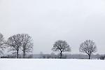 Europa, DEU, Deutschland, Nordrhein Westfalen, NRW, Rheinland, Niederrhein, Huenxe, Naturpark Hohe Mark, Lippeaue, Winter, Schnee, Baeume, Kategorien und Themen, Natur, Umwelt, Landschaft, Jahreszeiten, Stimmungen, Landschaftsfotografie, Landschaften, Landschaftsphoto, Landschaftsphotographie, Wetter, Wetterelemente, Wetterlage, Wetterkunde, Witterung, Witterungsbedingungen, Wettererscheinungen, Meteorologie, Wettervorhersage....[Fuer die Nutzung gelten die jeweils gueltigen Allgemeinen Liefer-und Geschaeftsbedingungen. Nutzung nur gegen Verwendungsmeldung und Nachweis. Download der AGB unter http://www.image-box.com oder werden auf Anfrage zugesendet. Freigabe ist vorher erforderlich. Jede Nutzung des Fotos ist honorarpflichtig gemaess derzeit gueltiger MFM Liste - Kontakt, Uwe Schmid-Fotografie, Duisburg, Tel. (+49).2065.677997, ..archiv@image-box.com, www.image-box.com]