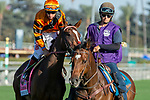 """ARCADIA, CA. SEPTEMEBER 29:#8 Cambodia, ridden by Drayden Van Dyke, in the post parade of the Rodeo Drive Stakes (Grade l) """"Win and You're in Breeders Cup Juvenile Fillies Division"""" on September 29, 2018, at Santa Anita Park in Arcadia, CA. (Photo by Casey Phillips/Eclipse Sportswire/CSM)"""