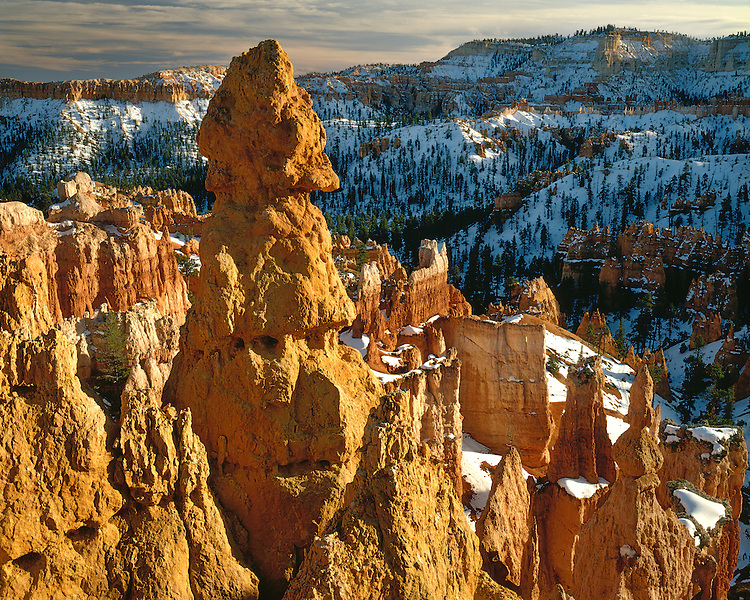 Sunrise light in Bryce Canyon as viewed from Sunrise Point; Bryce Canyon National Park, UT