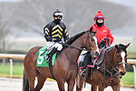 February 27, 2021: #5, Santa Cruiser in the post parade for the Southwest Stakes (Grade 3) at Oaklawn Park in Hot Springs, Arkansas. Ted McClenning/Eclipse Sportswire/CSM