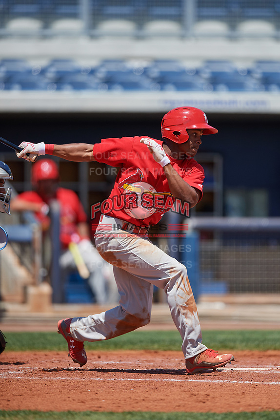 Palm Beach Cardinals center fielder Magneuris Sierra (7) at bat during a game against the Charlotte Stone Crabs on April 12, 2017 at Charlotte Sports Park in Port Charlotte, Florida.  Palm Beach defeated Charlotte 8-7.  (Mike Janes/Four Seam Images)