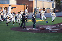 Christian Bullock (5) leads the Michigan Wolverines bench celebration after Jimmy Obertop's walk off home run against the Michigan State Spartans on March 21, 2021 in NCAA baseball action at Ray Fisher Stadium in Ann Arbor, Michigan. Michigan scored 8 runs in the bottom of the ninth inning to defeat the Spartans 8-7. (Andrew Woolley/Four Seam Images)