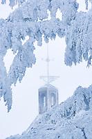 Frozen wind vane attop Timberline Lodge, Oregon