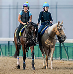 September 1, 2020: as horses prepare for the 2020 Kentucky Derby and Kentucky Oaks at Churchill Downs in Louisville, Kentucky. The race is being run without fans due to the coronavirus pandemic that has gripped the world and nation for much of the year. Scott Serio/Eclipse Sportswire/CSM