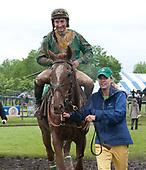 5th Virginia Gold Cup - Ebanour