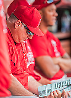 16 August 2017: Los Angeles Angels Manager Mike Scioscia looks at a lineup card in the dugout during a game against the Washington Nationals at Nationals Park in Washington, DC. The Angels defeated the Nationals 3-2 to split their 2-game series. Mandatory Credit: Ed Wolfstein Photo *** RAW (NEF) Image File Available ***