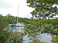 View through the trees on the bank of the river to the catamaran 'Impossible Dream' moored at the end of a jetty
