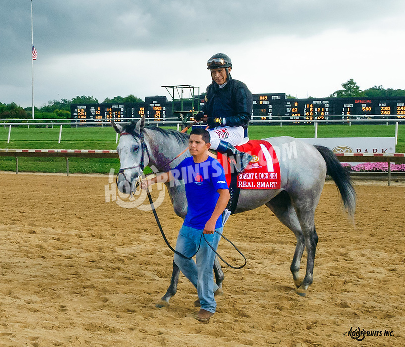 Real Smart winning The Robert G. Dick Memorial Stakes (gr 3) at Delaware Park on 7/9/16 beneath stormy skies