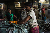 Workers offload raw hide as others carry the sludge byproduct  at a tannery in the Bantala area of Kolkata, West Bengal, India.