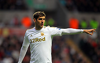 Saturday, 03 November 2012<br /> Pictured: Danny Graham of Swansea<br /> Re: Barclays Premier League, Swansea City FC v Chelsea at the Liberty Stadium, south Wales.