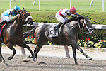 05 29 2010: Hour Glass with David Cohen up score the victory in the 60th running of the Grade 2 Vagrency Handicap for F&M 3-year old & up, at 6 1/2 furlongs, Belmont Park. Trainer Todd Pletcher.  Owner Mill House.