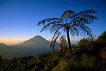 Dieng plateau, Java, Indonesia, 2002